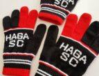 群馬県 サッカーチーム オリジナルデザイン お揃い手袋
